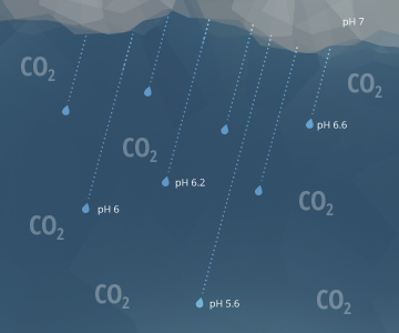 El dióxido de carbono en la atmósfera disminuye el pH